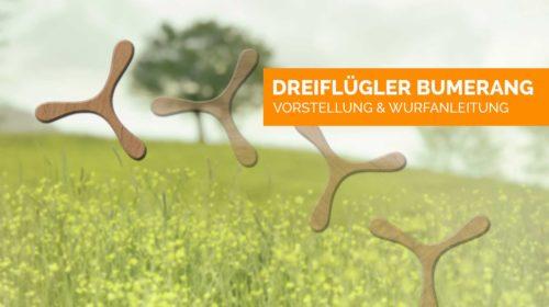 dreiflügler-bumerang-titelbild